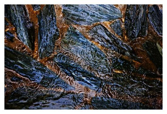 Landscape XVI-Peter Morneau-Art Print