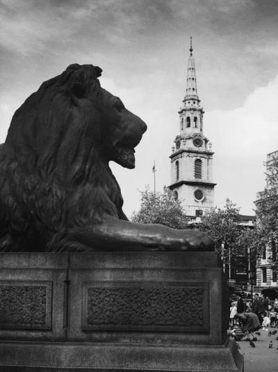 Landseer Lion--Photographic Print