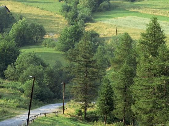 Lane Near the Polish Border, Near Zdiar, High Tatras, Slovakia-Upperhall-Photographic Print