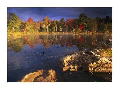 Lang Lake, fall colors, Ontario, Canada-Tim Fitzharris-Art Print