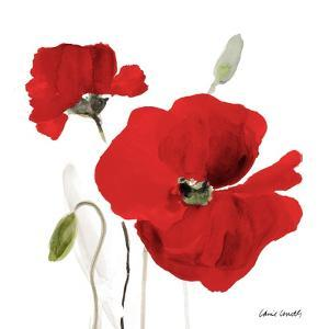 All Red Poppies I by Lanie Loreth