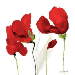 All Red Poppies II by Lanie Loreth