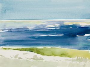 Cape Cod Seashore by Lanie Loreth