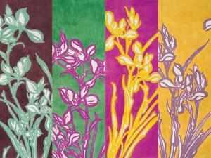 Cattleyas by Lanie Loreth