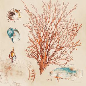 Coral Medley II by Lanie Loreth