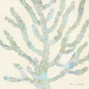 Coral Vision on Cream II by Lanie Loreth