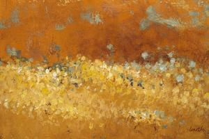 Flower Fields II by Lanie Loreth