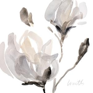 Tonal Magnolias I by Lanie Loreth