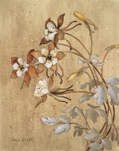 Wild Flowers II by Lanie Loreth