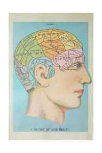 A Picture of Good Health - Vintage Cognitive Science Lithograph by Lantern Press