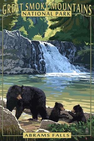 Abrams Falls - Great Smoky Mountains National Park, TN