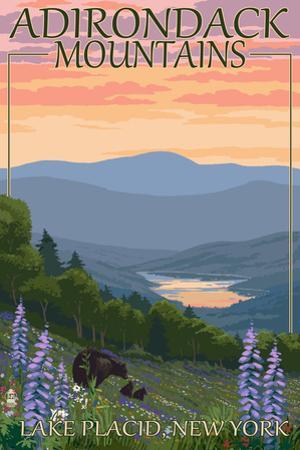 Adirondacks Mountains - Lake Placid, New York - Bears and Spring Flowers