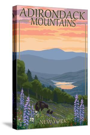 Adirondacks Mountains, New York State - Bears and Spring Flowers