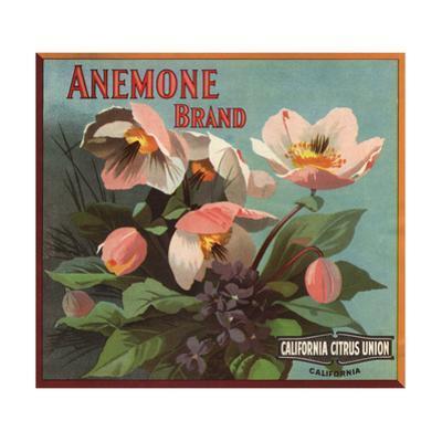 Anemone Brand - California - Citrus Crate Label
