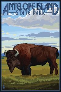 Antelope Island State Park, Utah - Bison and Field by Lantern Press