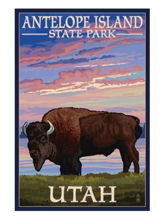 Antelope Island State Park, Utah - Bison and Sunset by Lantern Press