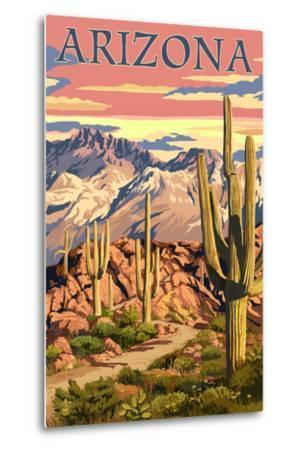 Arizona Desert Scene at Sunset