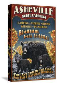 Asheville, North Carolina - Black Bear by Lantern Press
