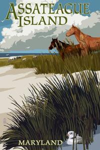 Assateague Island, Maryland - Horses and Dunes by Lantern Press