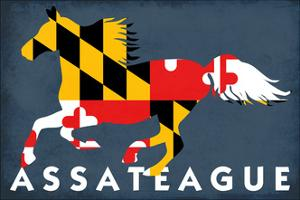 Assateague, Maryland - Horse Flag by Lantern Press