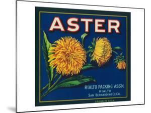 Aster Brand Citrus Crate Label - San Bernardino, CA by Lantern Press