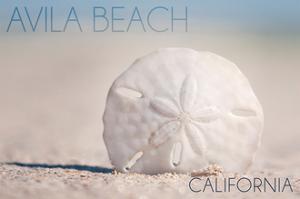Avila Beach, California - Sand Dollar and Beach by Lantern Press