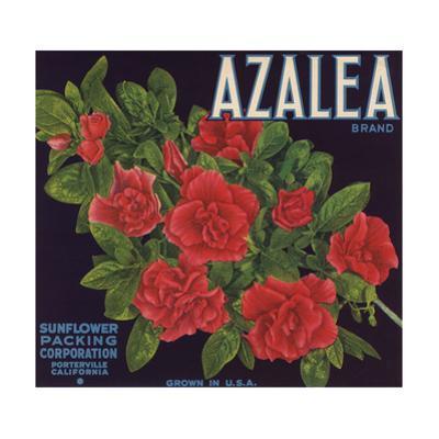 Azalea Brand - Porterville, California - Citrus Crate Label