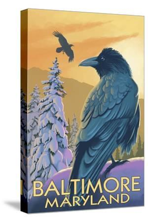Baltimore, Maryland - Raven