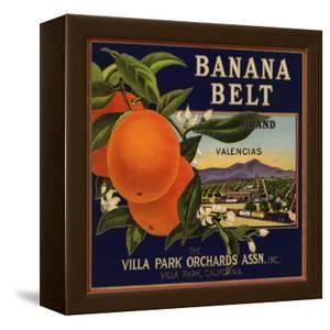 Banana Belt Brand - Villa Park, California - Citrus Crate Label by Lantern Press