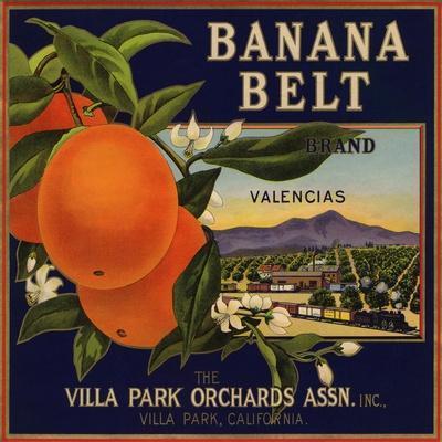Pomona Ca  Angora Orange Citrus Fruit Crate Label Vintage Art Print