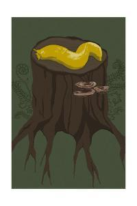Banana Slug by Lantern Press
