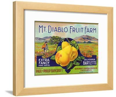 Bancroft, California, Mt. Diablo Fruit Farm Brand Pear Label