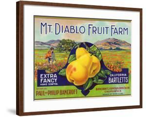 Bancroft, California, Mt. Diablo Fruit Farm Brand Pear Label by Lantern Press