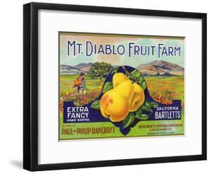 Bancroft, California, Mt. Diablo Fruit Farm Brand Pear Label by Lantern Press