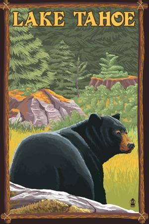 Bear in Forest - Lake Tahoe, California by Lantern Press