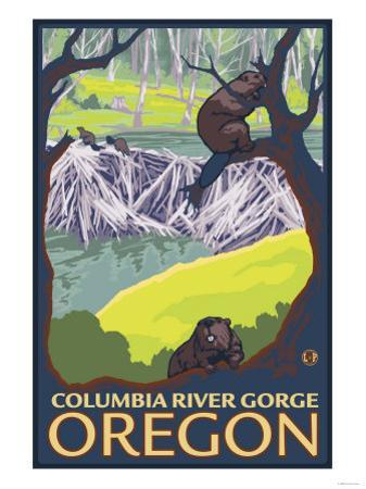 Beaver Family, Columbia River Gorge, Oregon