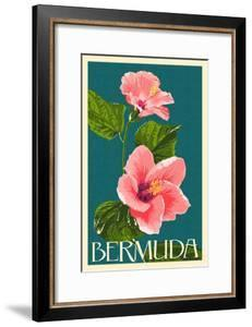 Bermuda - Pink Hibiscus by Lantern Press