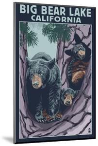 Big Bear Lake, California -Bear and Cubs by Lantern Press