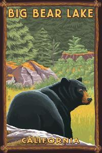 Big Bear Lake, California - Black Bear in Forest by Lantern Press