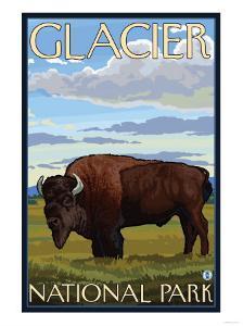 Bison Scene, Glacier National Park, Montana by Lantern Press