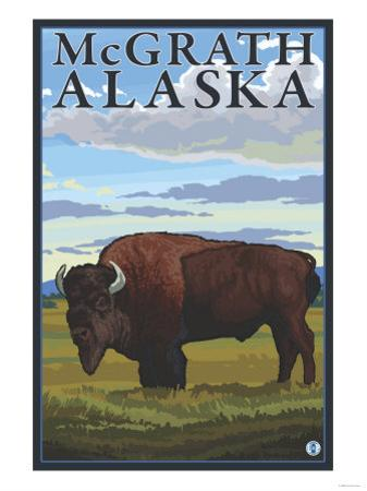 Bison Scene, McGrath, Alaska by Lantern Press