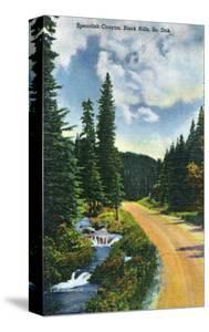 Black Hills, South Dakota, View of Spearfish Canyon by Lantern Press