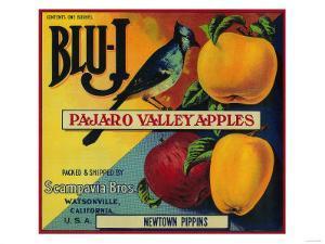 Blu-J Apple Crate Label - Watsonville, CA by Lantern Press