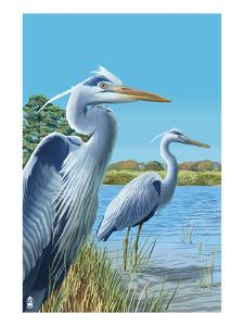 Blue Herons - East Coast by Lantern Press