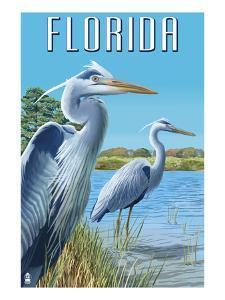 Blue Herons in Grass - Florida by Lantern Press