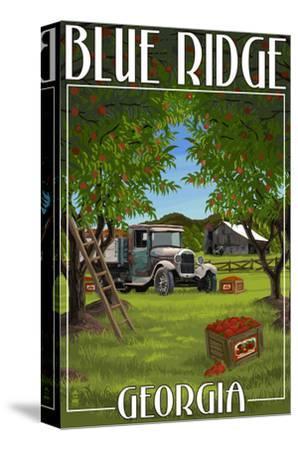 Blue Ridge, Georgia - Apple Harvest