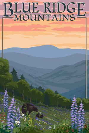 Blue Ridge Mountains - Bear Family and Spring Flowers