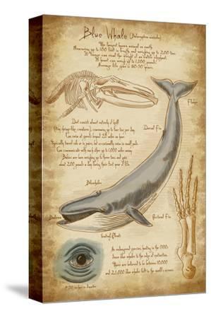 Blue Whale Davinci
