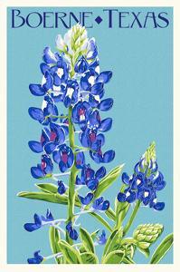 Boerne, Texas - Bluebonnet - Letterpress by Lantern Press
