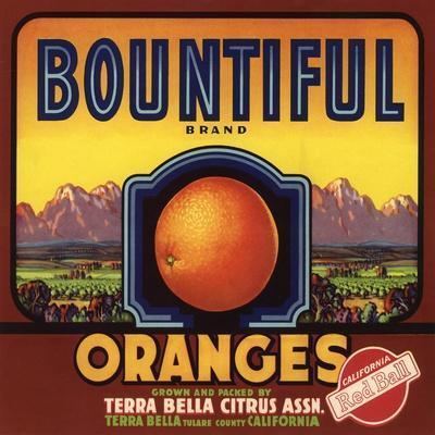 Santa Susana Simi Brand California Orange Citrus Fruit Crate Label Art Print